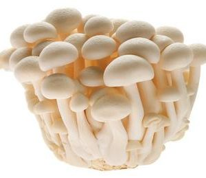CN Snow White Mushrooms