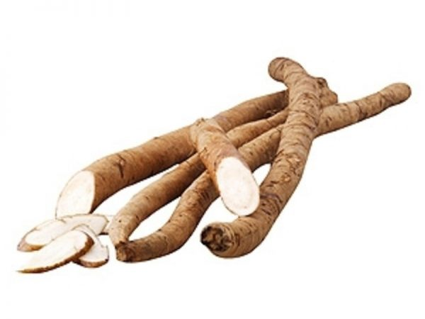 CN Burdock/Gobo Roots New